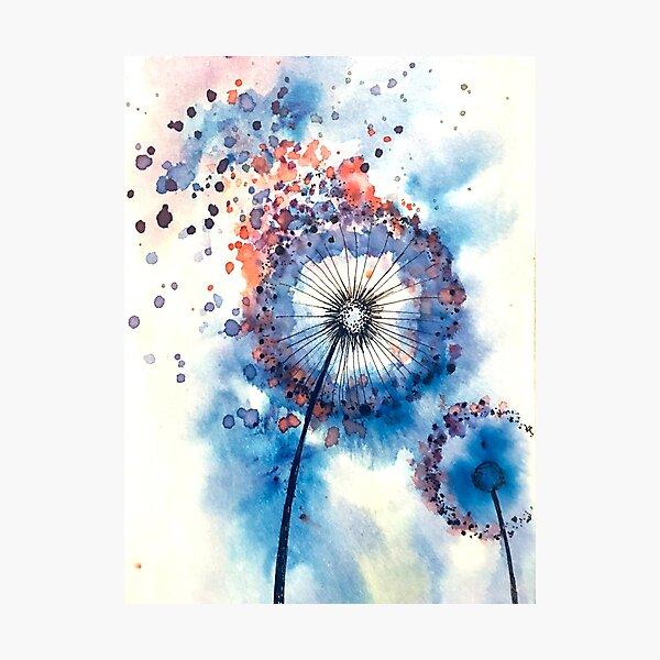 Colorful Dandelion  Photographic Print