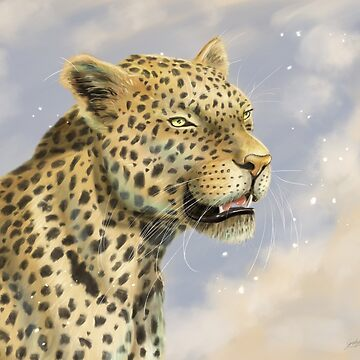 Leopard by Gorgalac