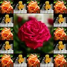 Summer Roses Collage by Kathryn Jones
