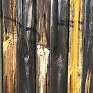 Fence Aged and Textured by Joy Watson