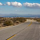 Road in Joshua Tree National Park by Nickolay Stanev