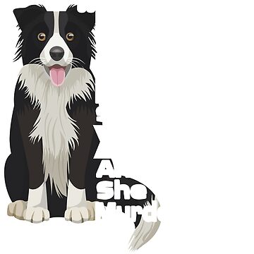 Don't Mess With Me My Mom Is Crazy Border Collie Lady T-Shirt by Leevinstee