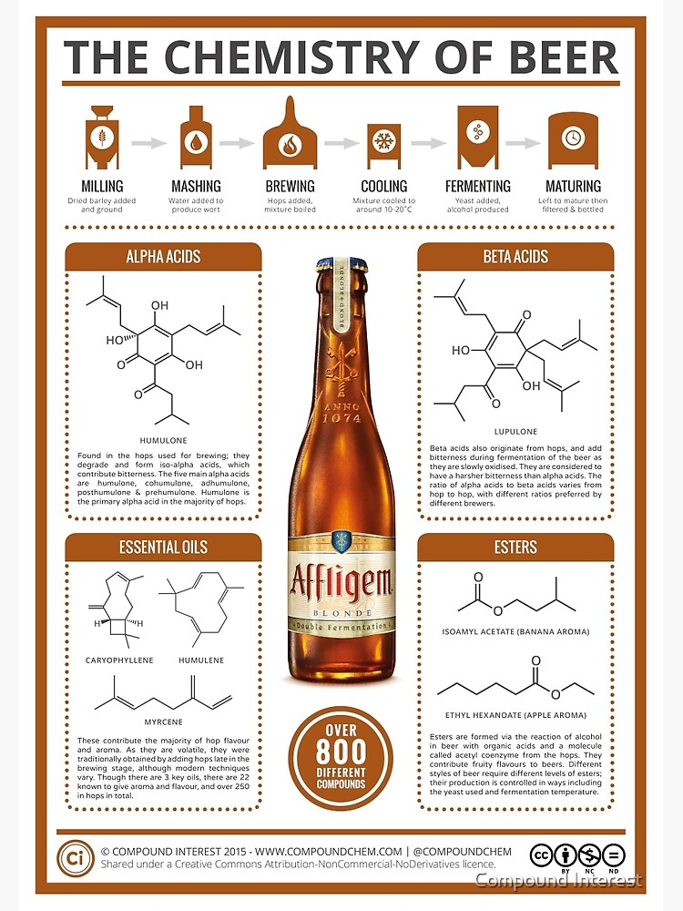 Chemistry of beer in an image