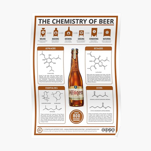 The Chemistry of Beer Poster