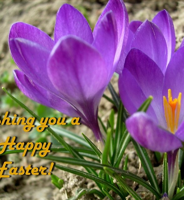 Wishing you a happy Easter! by Ana Belaj