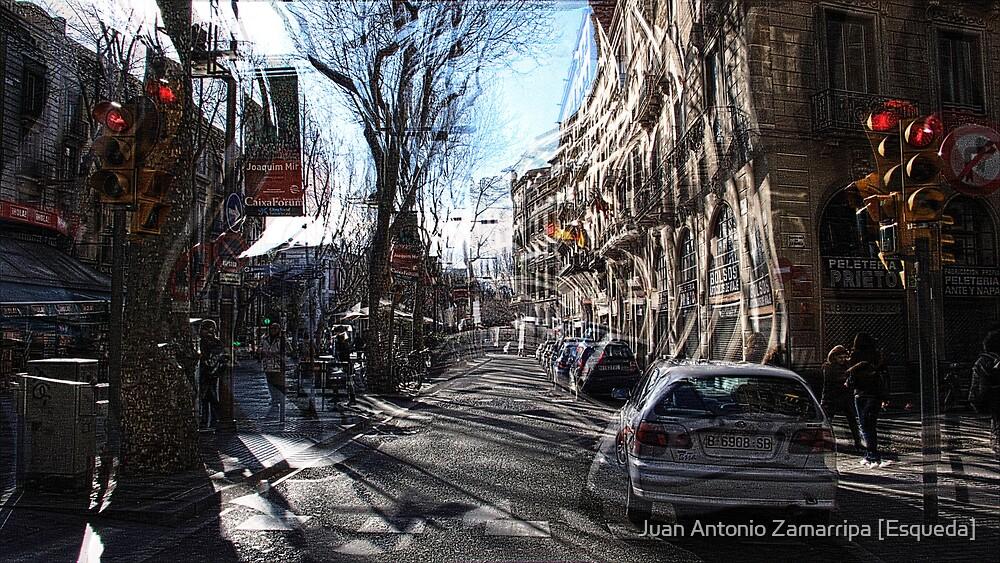 it be's that way sometimes... [P1200291 _XnView _GIMP] by Juan Antonio Zamarripa [Esqueda]
