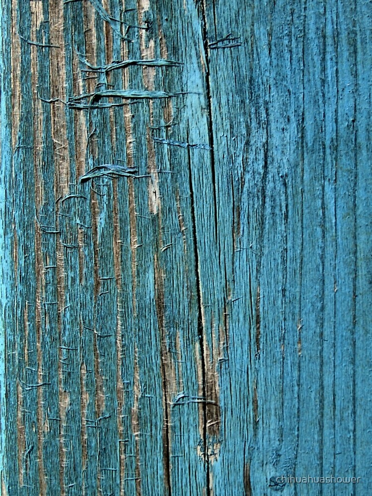Rustic wood effect shabby print in turquoise by chihuahuashower