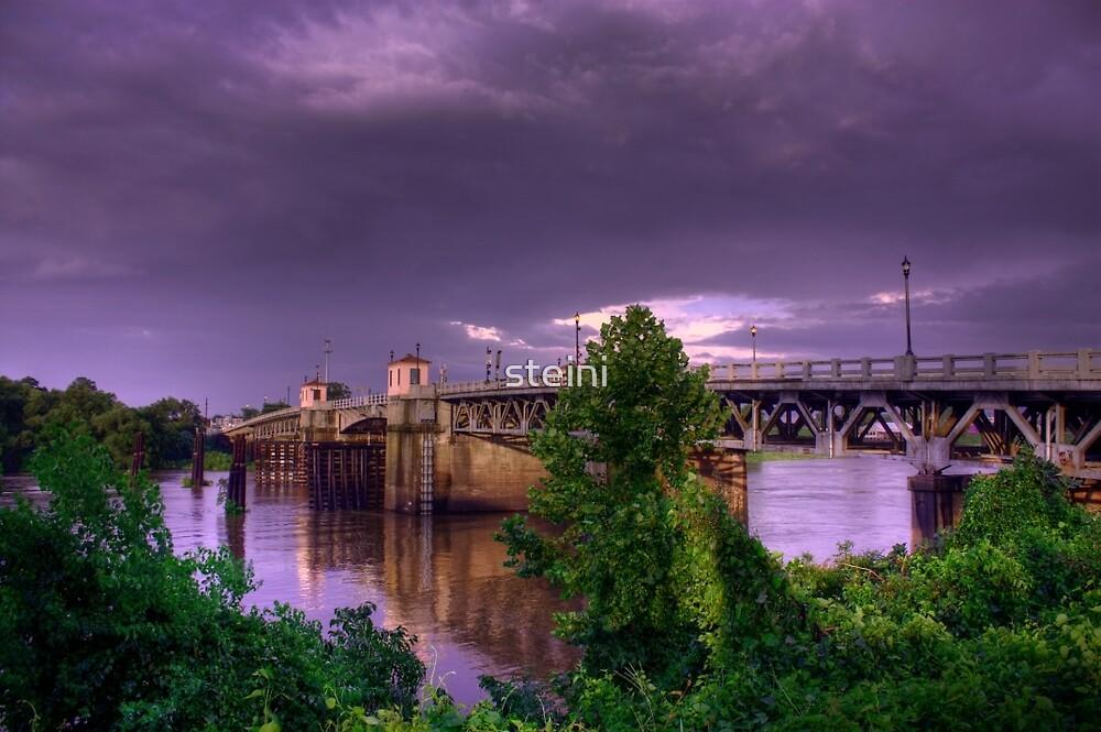 Lea Joyner Memorial Bridge by steini