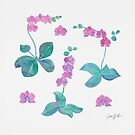 Orchids by AnnaWolfArt