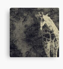 ...the Vast Expanses of the Earth Canvas Print