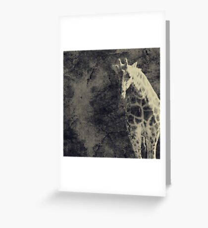...the Vast Expanses of the Earth Greeting Card
