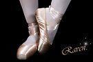 Ballet Shoes by Kimberly Palmer