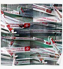 CAM02254-CAM02257_GIMP_B Poster