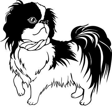 Cute dog by HTaS