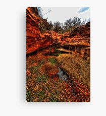 RockHollow Ravine Canvas Print