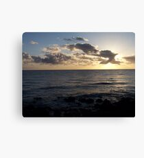 Bird over water at sunrise Canvas Print