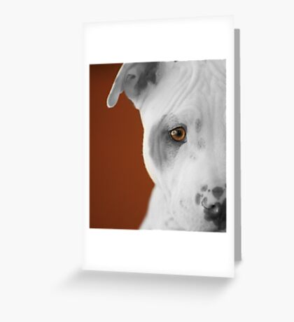 freckles the pit 3 Greeting Card