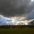 Rain Clouds by Laura Puglia