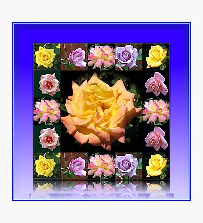 Summer Roses Collage Photographic Print