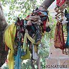 Sacred Tree by signaturelaurel