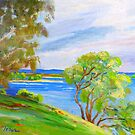 Mallacoota Inlet Victoria by Virginia McGowan