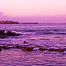 Landscapes: Shellharbour by Vanessa Pike-Russell