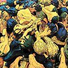 Gourds by John Schneider