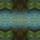 Okavango Delta aerial view abstract 2 by quentinjlang