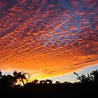 sunrise at Milligan Island by BigAndRed