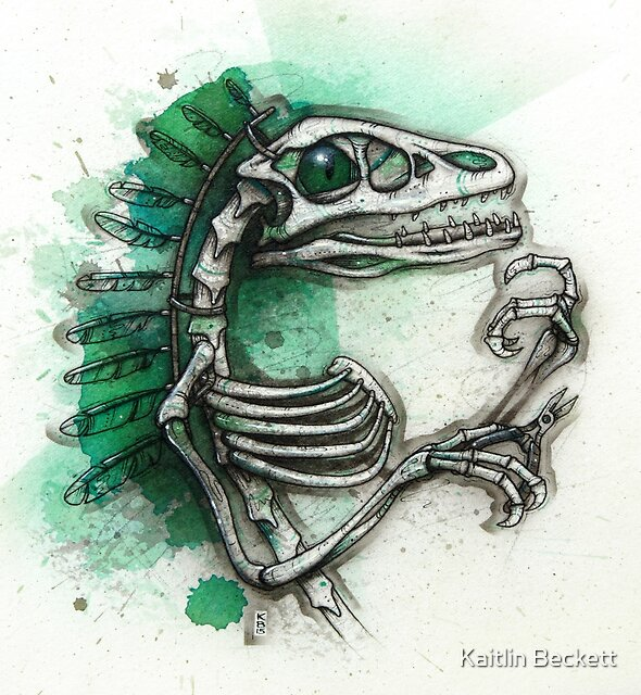 Feathered Raptor by Kaitlin Beckett