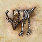 D-Rex by Kaitlin Beckett