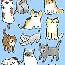 Tiny Cats by Charis Woodrow