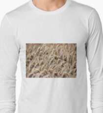 golden wheat field agriculture industry Long Sleeve T-Shirt