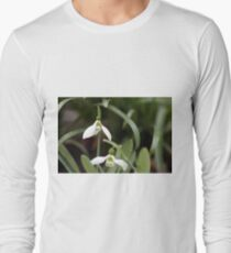 snowdrop in grass spring season Long Sleeve T-Shirt