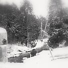 Winter Was Here................. by Larry Llewellyn
