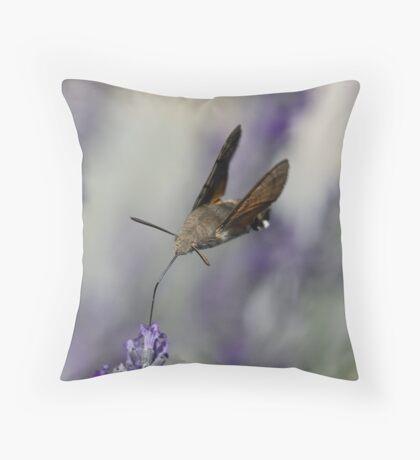 Humming Bird Moth 3 Throw Pillow