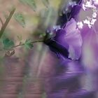 Dreaming in Purple #2 by Elaine Teague