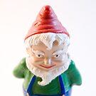 Evil Gnome by Rachel Blumenthal