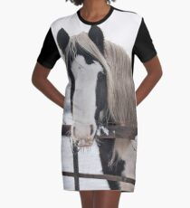 Horse by the fence Graphic T-Shirt Dress