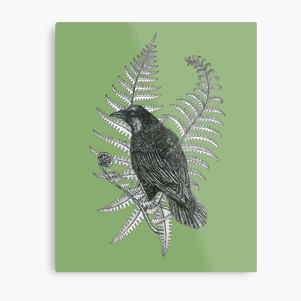 ink crow in a fern forest on dark green Metal Print