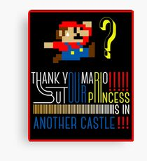 Mario Castle Canvas Print