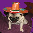 Too Much Tequila by Linda Miller Gesualdo