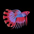Crowntail betta 2 by pikaole