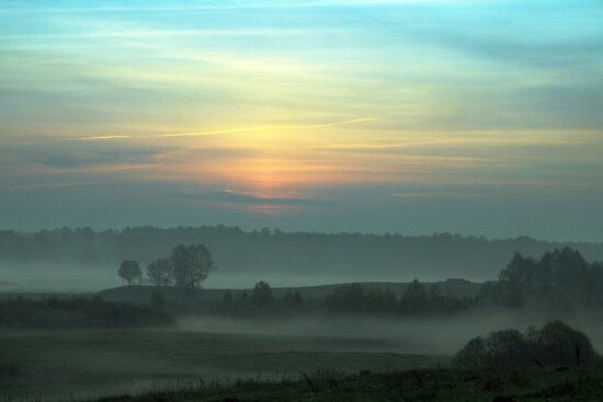 Fog Layers by Antanas