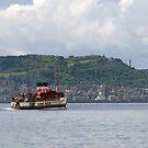 The  Waverley Paddle Steamer by Alexander Mcrobbie-Munro