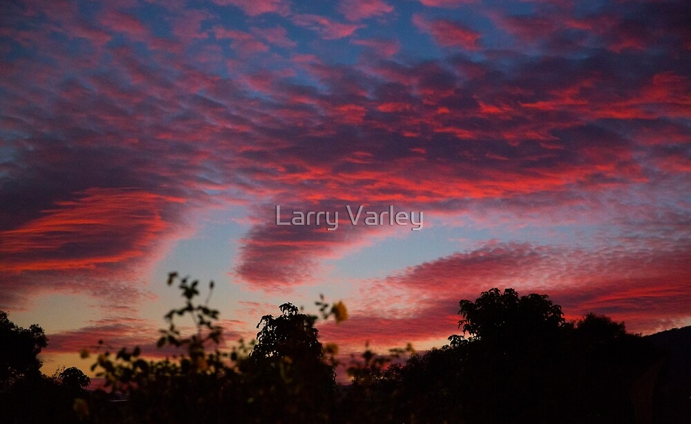 Dandenong ranges sunrise series #3 by Larry Varley