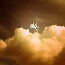 Pegasus ~ Dusk by RichCaspian