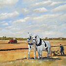 Hayton Ploughing Match by Sheila Fielder