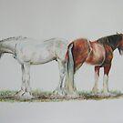 Horses at Ennerdale Show by Sheila Fielder