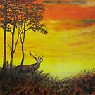 Red Stag at Night by Sheila Fielder
